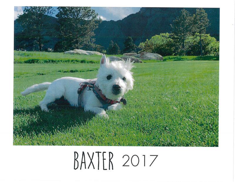 Baxter calendar